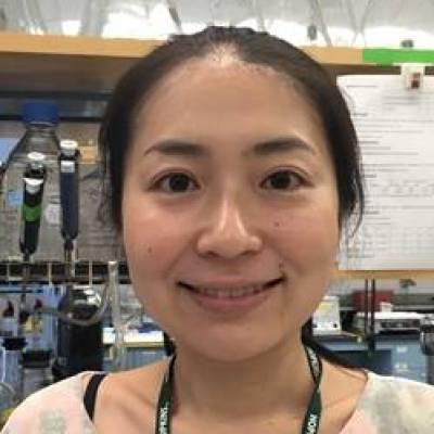 Ishida Chiaki