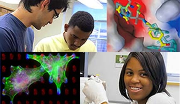 Biophysics Research for Baltimore Teens